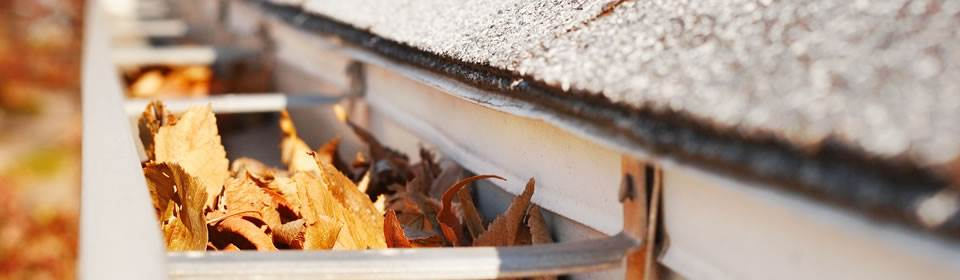 herfstbladeren in dakgoot